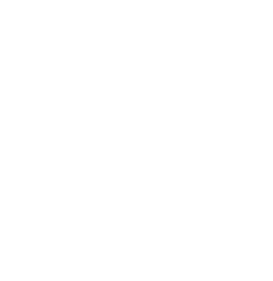 illustrated outline of a raised fist